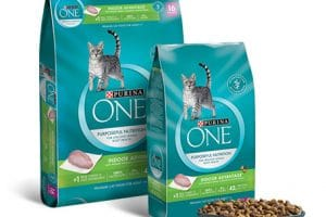 Publix – Purina ONE Assorted Cat Food Only $2.63