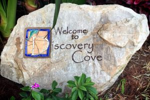Discovery Cove Orlando – A Tropical Getaway for the Day