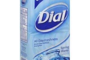 Dial Bar Soap: 8 Pack ONLY $1.99 – Walgreens